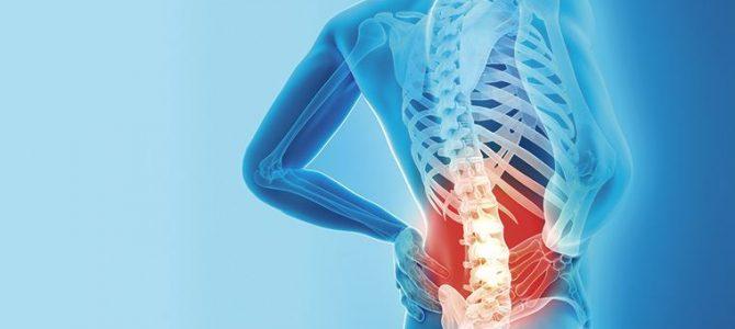 La relación entre el rendimiento de equilibrio, la fuerza extensión lumbar, resistencia extensión del tronco y dolor a los participantes con dolor lumbar crónico